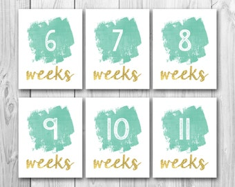 Pregnancy countdown, pregnancy signs, chalkboard sign, pregnancy photo props, gold signs