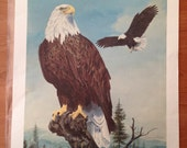 "Vintage print ""The Fair Land"" by Catherine Girard of American eagle 25""x19"""