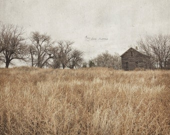 Rustic Photo, Neutral Gray Art, Landscape Photography Print, Living Room Art, Farmhouse Wall Decor | 'Seldom Seen No. 2' - Aged Page Series