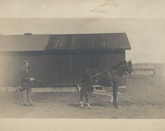 Driving Lessons - Antique 1910s Man and Horse Real Photo Postcard