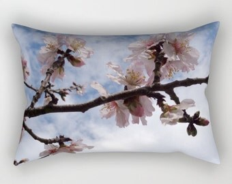 Almond Blossoms, rectangular pillow, photographic, branches, blossoms, tree, spring, sky, clouds, blue, rose, serenity, rose quartz, Greece