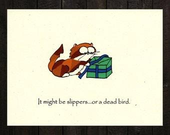 Funny Birthday Card - Mystery Present
