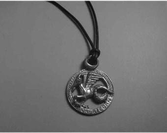 Capricorn zodiac sterling silver 925 charm pendant necklace horoscope zodiaque pendants