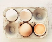 Food Photograhy, Egg Photo, Kitchen Wall Art - Home Decor- Rustic Wall Decor - Black and White Photography- Sepia- Fine Art Photography