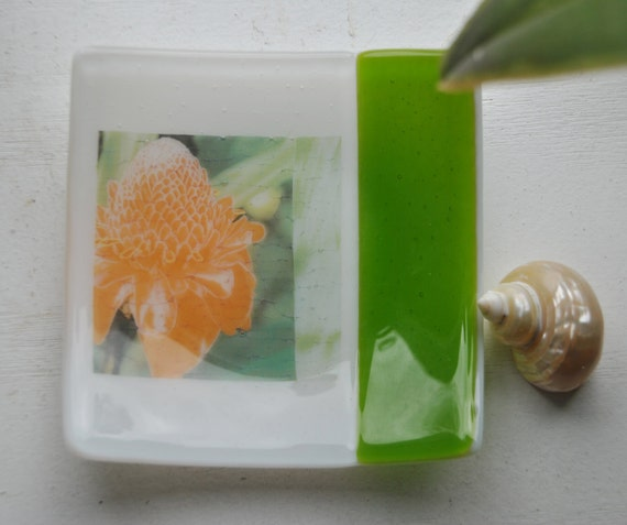 Awapuhi-Torch Ginger 5x5 Square Glass Fused Dish, white and green glass