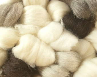 26 Breed Roving Sample Pack
