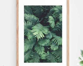 Downloadable Wall Art Tropical Plant Jungle Leaf Fern Printable Wall Art Green Instant Download Nature Jungle Modern Wall Decor Contemporary