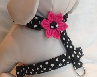 Dog Harness / Black & White Polka Dot - Size  XS, S, M