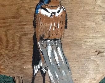 Barn swallow on driftwood
