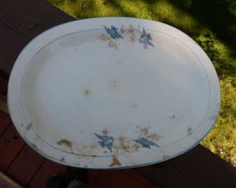 Unknown Maker Bluebird Serving Platter With Pink Floral Blue Trim And Edge