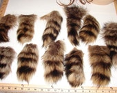 T-7 Smaller Genuine Fur Raccoon TAIL Craft Supply Pelt Remnants Pieces