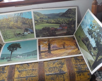 Set of 5 Nature Heartland Place Mats :)