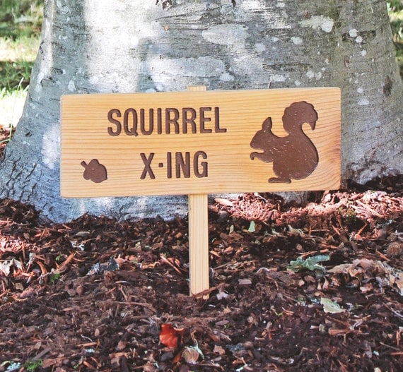 SQUIRREL X-ING, Squirrel Crossing, Personalized Sign, Outdoor Sign, Nature Signage, Gift for Nature Lover, Gift for Dad, Grandpa, Grandma