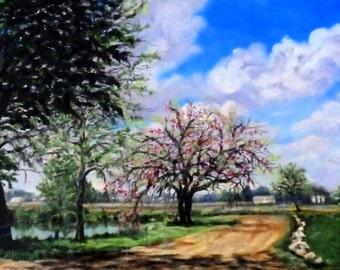 "Fine Art 12 X 16 Original Oil Landscape Painting ""Isaac Walton"""