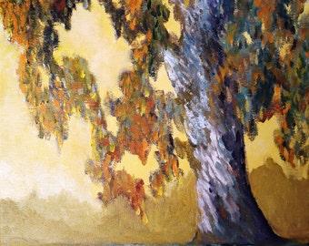 Eucalyptus Tree Painting Print on Aluminum, Impressionistic California Sunrise, Original Home Decor, Modern Art