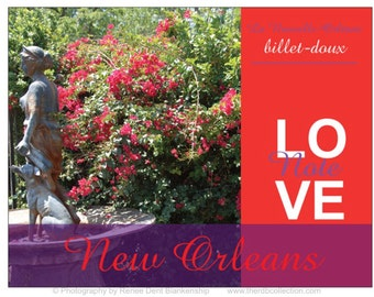 Love Notes - Garden Cards - Fountain and Bougainvillea - Billet Doux Stationery - New Orleans Notecards - Avec Amour - theRDBcollection