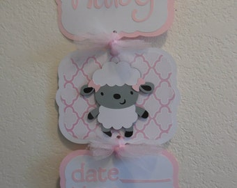 Baby Girl Hospital Door Banner - Lamb Theme Baby Banner -  Baby Girl Shower Sign- 3 cards