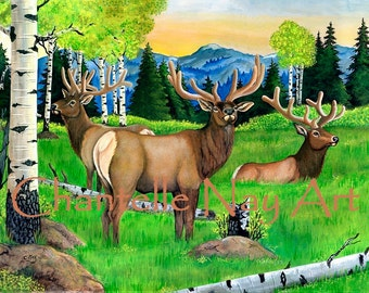 Bull elk. Elk in the velvet.  Wildlife art.  Elk print. Elk art.
