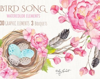 Bird Song Collection - Floral Watercolor Elements - PNG file