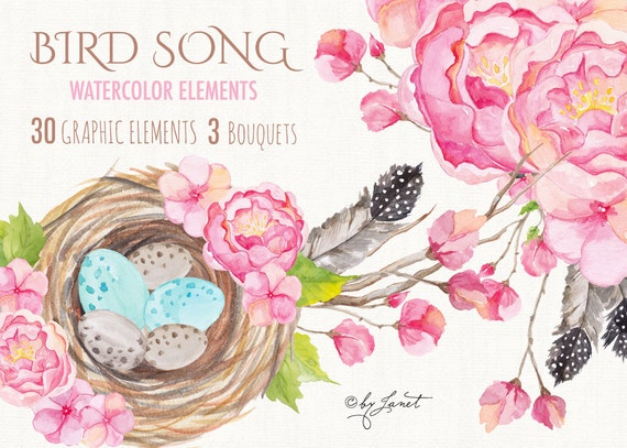 https://www.etsy.com/uk/listing/248213767/bird-song-collection-floral-watercolor?ref=shop_home_active_15