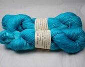 Rejuvenate Tenacity 80/20 merino/silk fingering weight yarn shawl length skein extra length