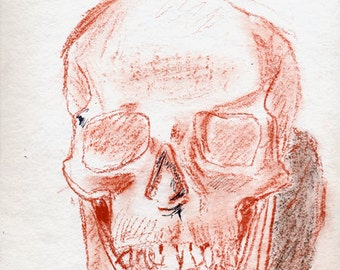 Finished Drawing Skull #1