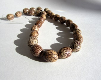 Betel Nut Beads Full Strand Tropical Renewable Sustainable Ecofriendly Brown Natural Material Wholesale Jewelry Supplies CrazyCoolStuff