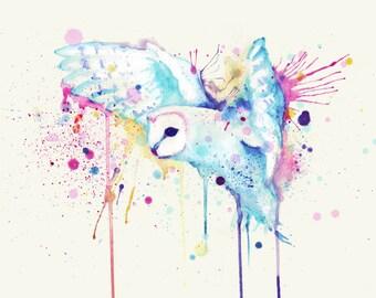 Rainbow Barn Owl Fine Art Print
