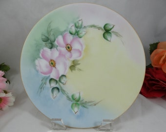 Vintage Hand Painted Thomas Sevres Bavaria Small Plate - Lovely