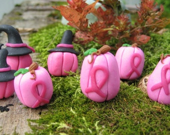 Mini Pink Pumpkin or Witchy Pink Pumpkin. Fundraiser for Breast Cancer Family Foundation