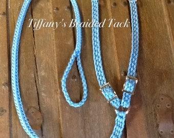 Double dog leash light blue....custom colors available