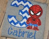 Spider Man Birthday Shirt