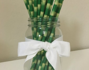 25 Green Bamboo Paper Straws / Cake Pop Sticks