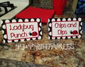 Ladybug themed Food Sign Tent Cards- Customized Digital File