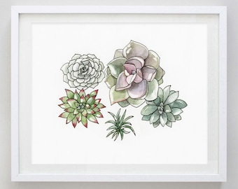 Succulents  2 Watercolor Print - Succulent Art - Succulent Wall Decor