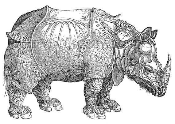 Sumatran Rhinos Coloring Page Free Printable Coloring Pages Woolly ...