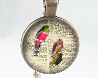 Birds  Vintage Print Necklace Pendant  glass arrows