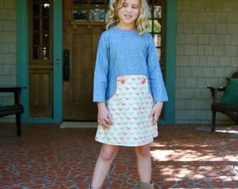 Size 1 2 3 4 5 6 7 8 9 10 girls Fall Dress -  modern shift dress - Long sleeve shift dress for girls bird print