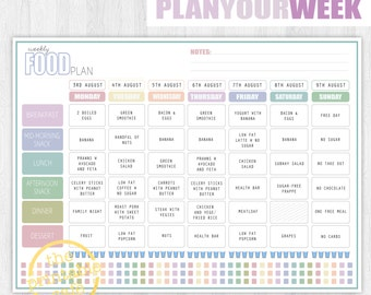 2017 PLANNER Pages Life Organizer Digital Printable