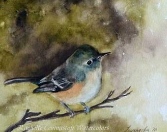 For her Watercolour painting Bird Print Neighbor gift Winter decor blue bird painting bird wall art BIRD ART PRINT Bird fall spring  5x5