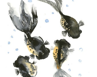 Black Moor Painting, aquarium art, fish art, fish painting black fish, aquarium lover, 14 x 11""