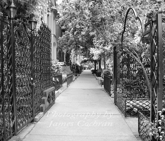 Sidewalk in Chicago / East Bellevue Place - 8 x 10
