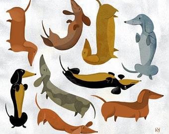 Wiener Dog Acrobats