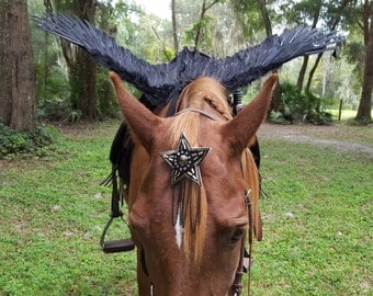 Black Horse Wings -- Feathered Wings for Horse, Pony or Miniature Horse Pegasus, Equine Angel Horse Costume