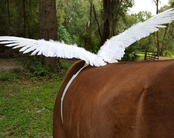 White Horse Wings -- Feathered Wings for Horse, Pony or Miniature Horse Pegasus, Equine Angel Horse Costume