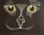 Hand drawn black cat vest top