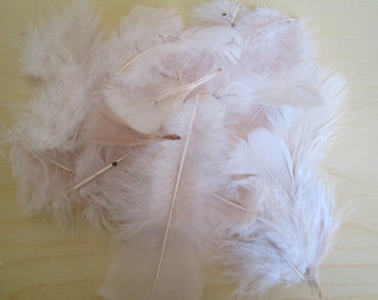Pale Pink Feathers for Crafting, Light Pink Feathers