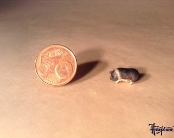 Miniatuur Pig