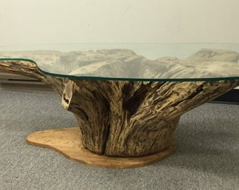 root coffee table tree root table tree truck table root tables rustic