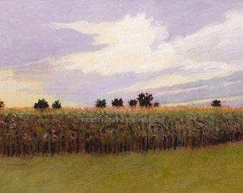 Landscape print cornfield , impressionism, fields, paper, art, scenic pictures, corn, green, lavender, country scene, farmland, rural